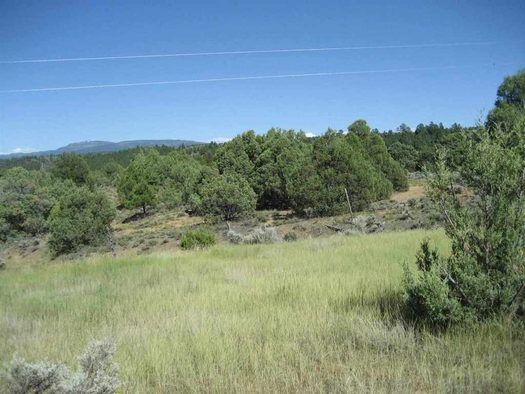 Photo of home for sale at Tract B Meneakis Tract, Rutheron NM
